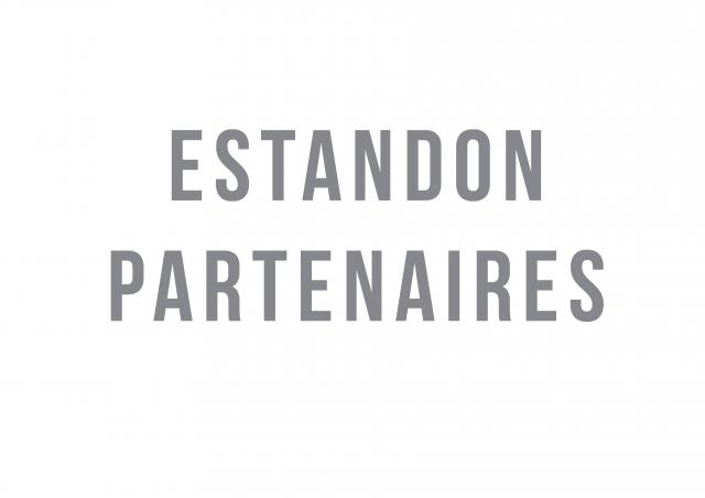 Logo Estandon Partenaires