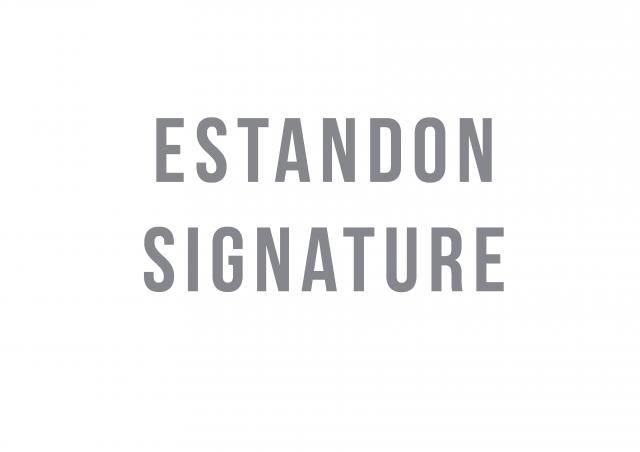 Logo Estandon Signature